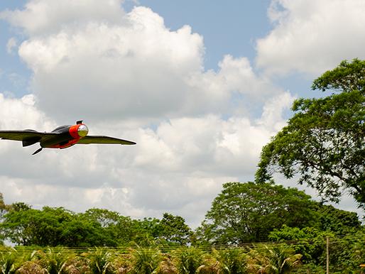 O que é agricultura digital? Como aumentar a produtividade com drones?