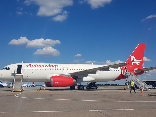AEGEAN Increases Stake in Romanian Carrier Animawings to 51 Percent