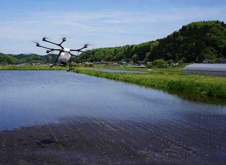 飯南町にて水稲除草剤をドローンで散布しました