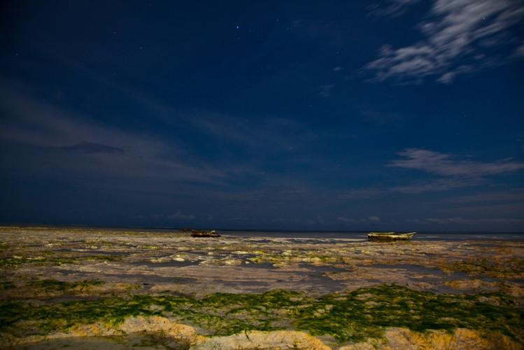 Moon Light Low tide_1024.jpg