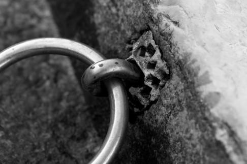 rings of past.jpg