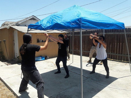 Sixth Installment of the Socialist Party Los Angeles Local Self-Defense Training Program