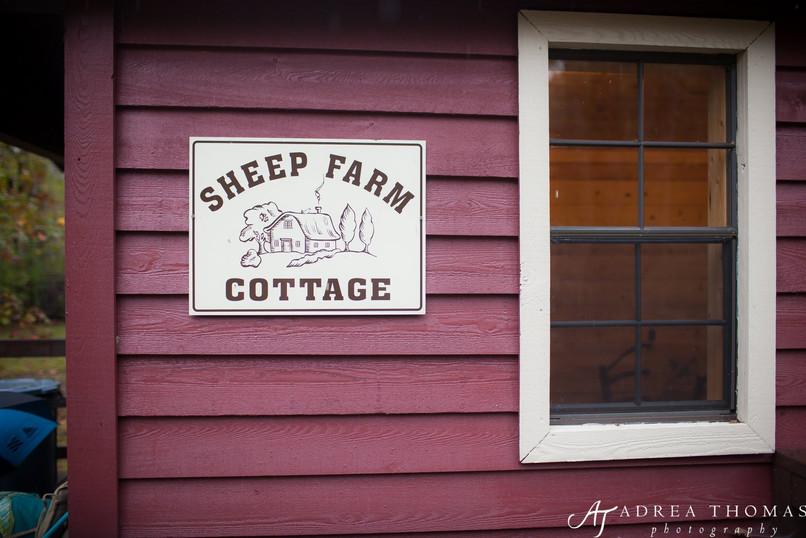 A For Willow Creek Farm-0047.jpg
