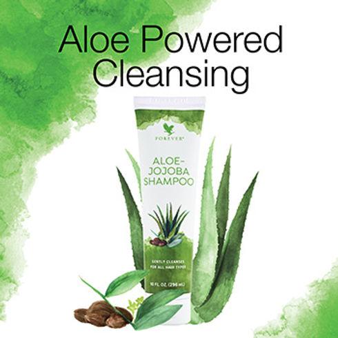 Aloe-Jojoba-Shampoo.jpg