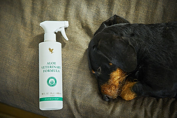 Aloe Vet Spray