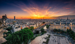 The gargouille of Notre Dame