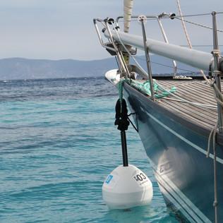 Des bouées écologiques pour s'amarrer à Port Cros sans arracher les herbiers de Posidonie