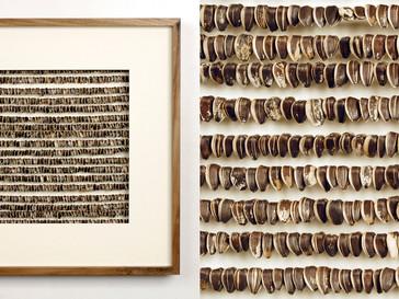Helianthus /// Nussbaum, geölt, 45 x 45 cm, 2008