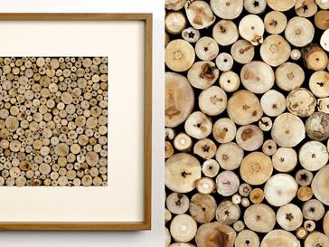 Verzweigung /// Nussbaum, geölt, 45 x 45 cm, 2008