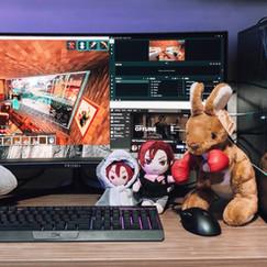 PRISM+ X340 Gaming Monitor   2020