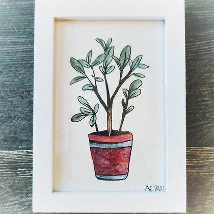 Framed Watercolor Print 4x6 - Green Thumb
