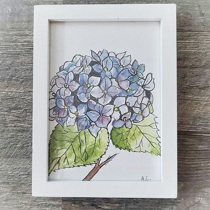 Framed Watercolor Print 5x7 - Hydrangea