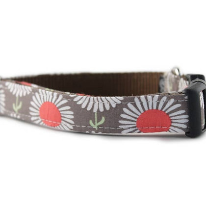 Daisies in Taupe Dog Collar -XSmall