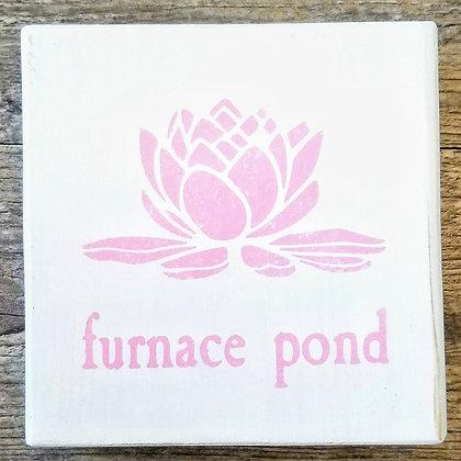 Furnace Pond Shelf Sitter 5x5