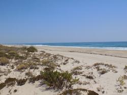 Tavira - Praia de Barril