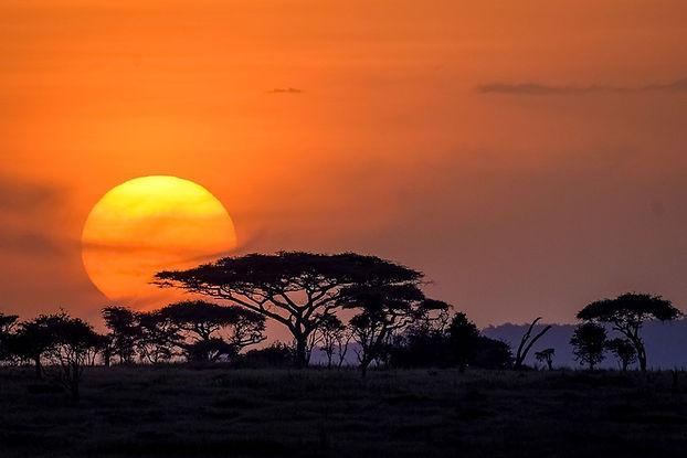 Serengeti_sunset-1001.jpg
