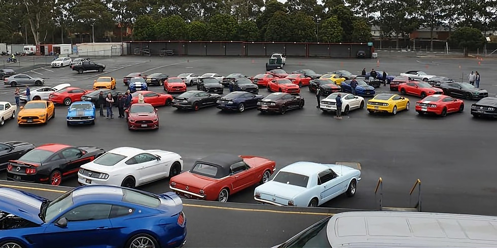 Mustang Motorsport Performance Driving Day & Mustang Display
