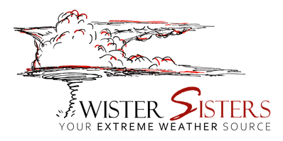 TS Logo Tagline Transparent.png