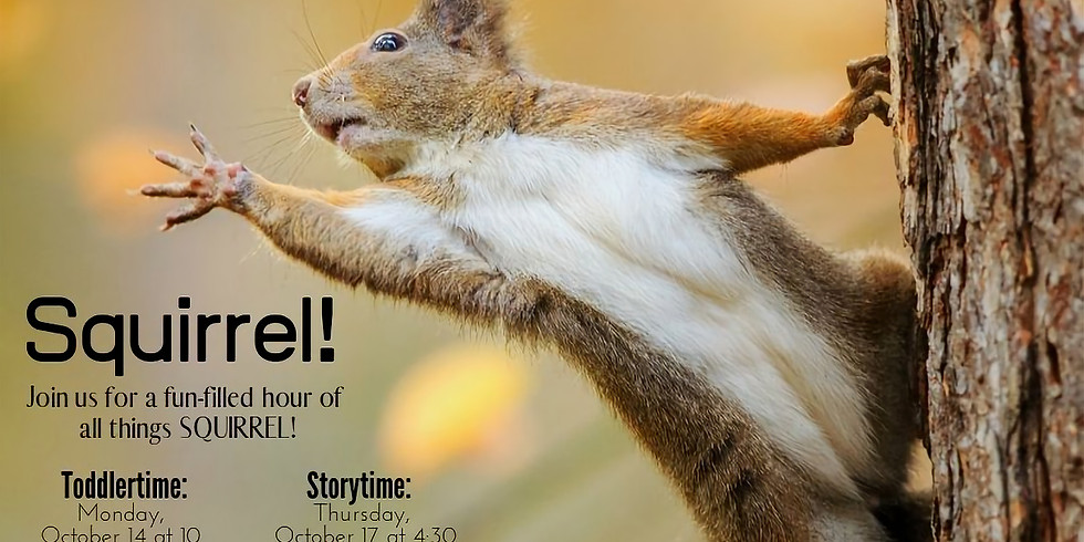 All Things Squirrel!