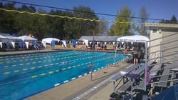 Walnut Creek SCM pool