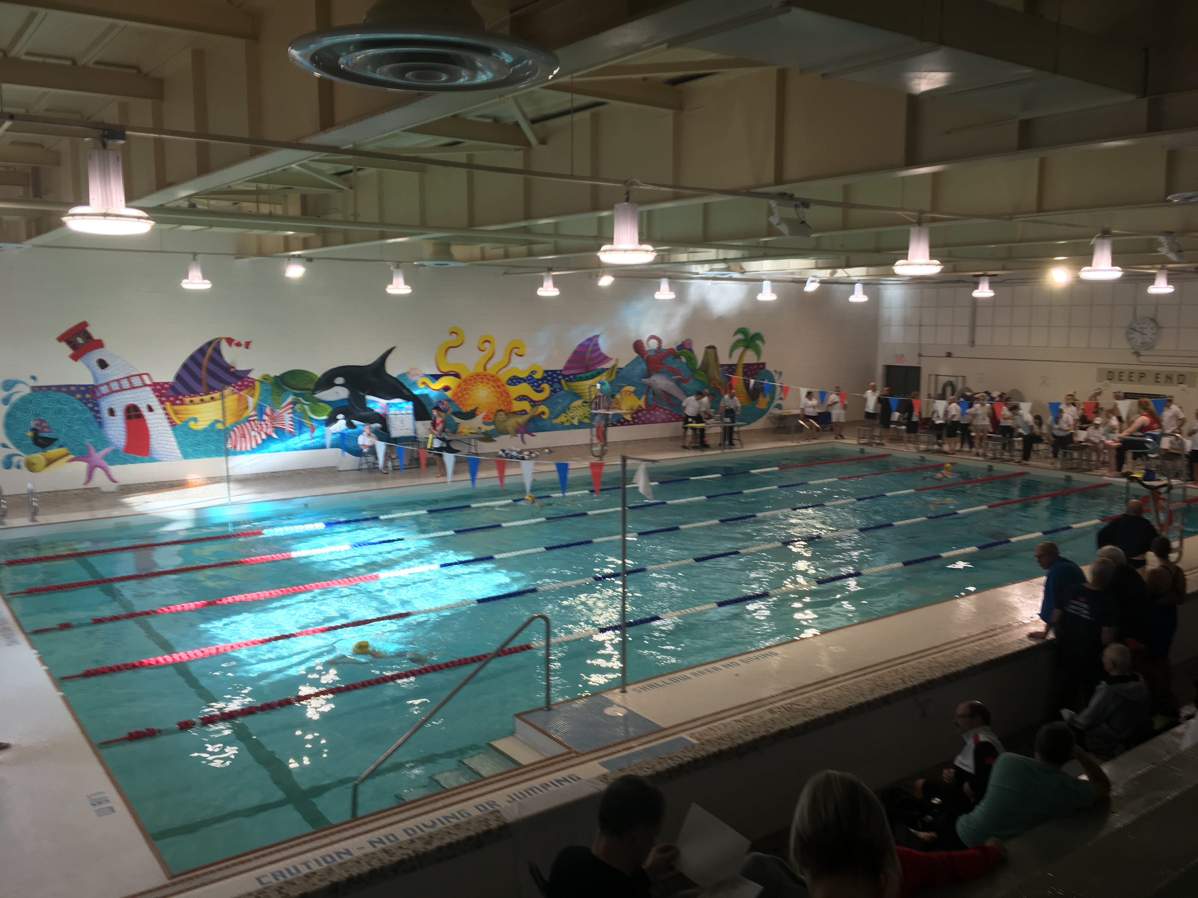 0393 - Alderwood Pool - Etobicoke