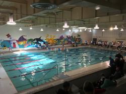 0393 - Alderwood Pool - Etobicoke