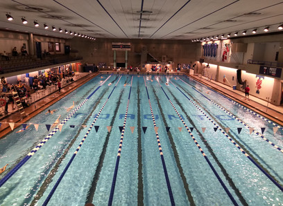 Race Report: All-Out Swim