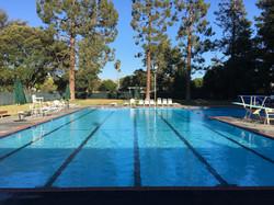 0302 - Glenmore Gardens Meyer Pool