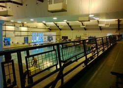 0140 - Grizzly Pool (Missoula, MT)