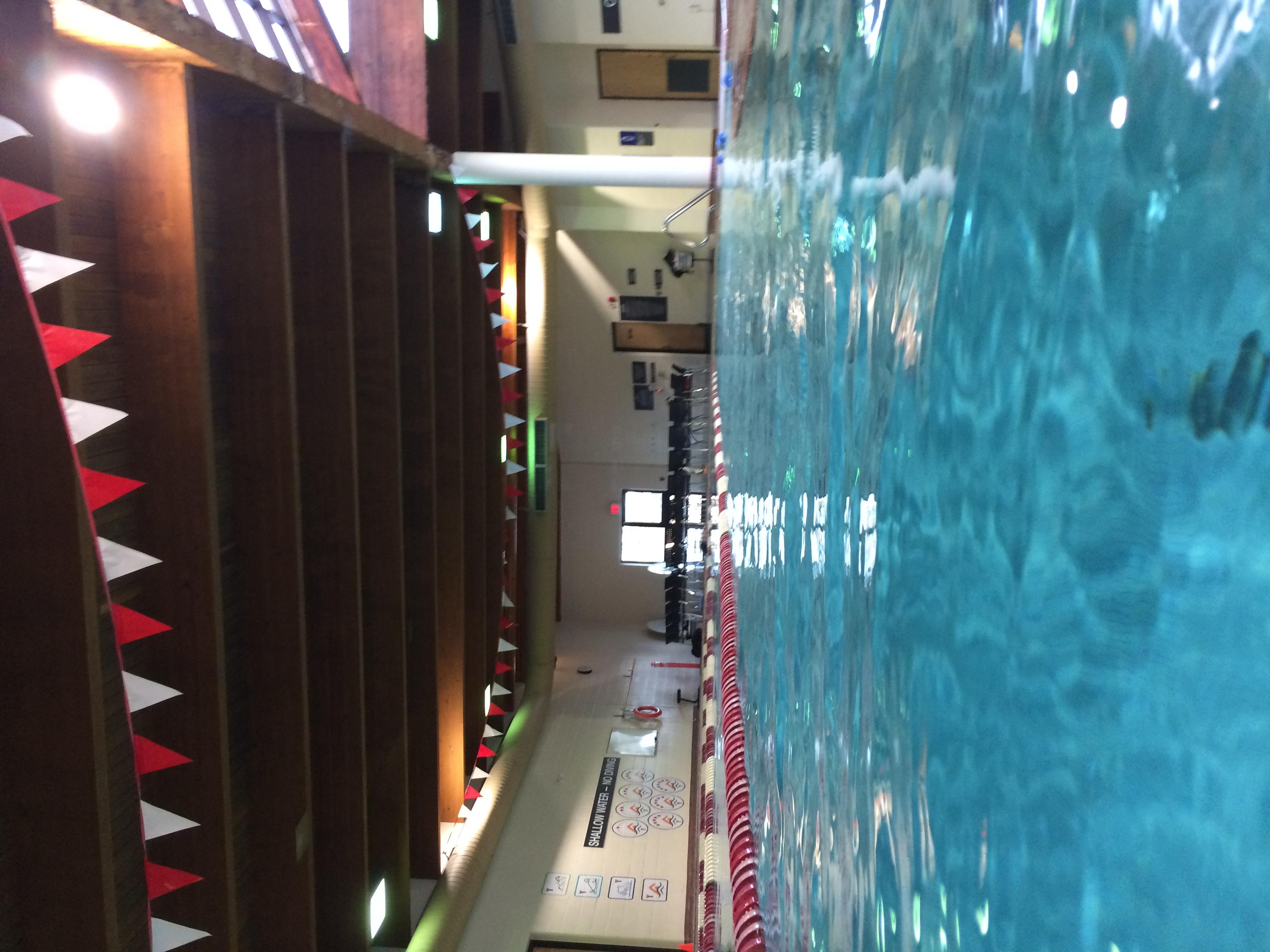 0463 - Collingwood YMCA