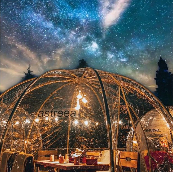 Dining Dome Table