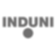 logo-induni_Plan de travail 1.png