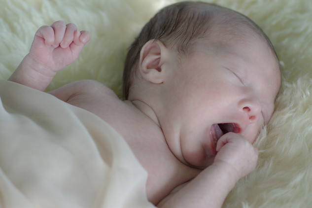 Babyfotos - Newborn