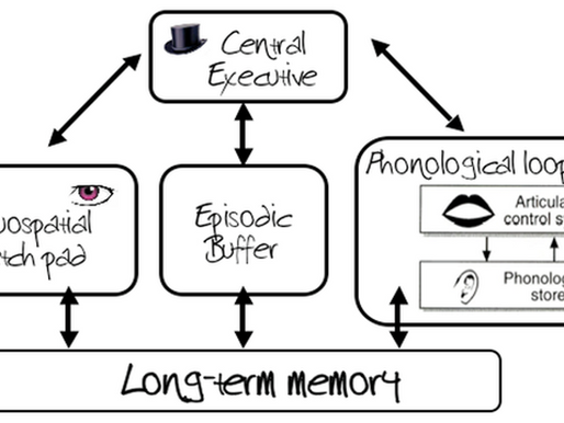 Working Memory: important but overlooked