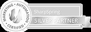 ribbon_silver_edited.png
