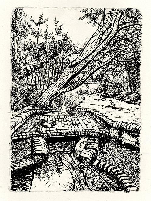 River Ravensbourne by Keston Ponds