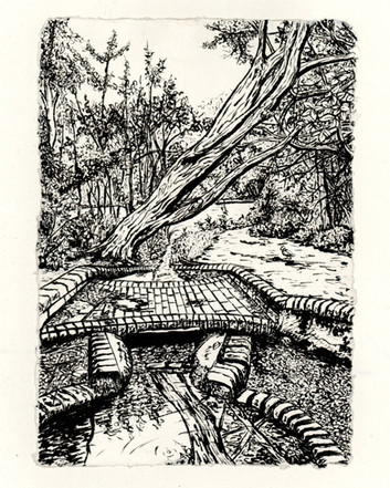Source of the River Ravensbourne