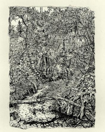 Crofton Woods