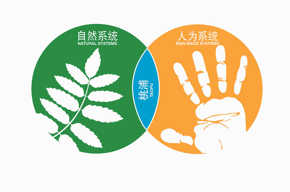 Taopu-Concept-Graphic.jpg