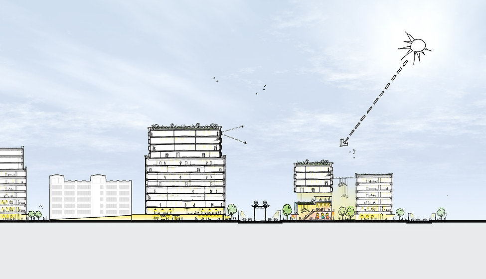 Obama-Library_site15-section.jpg
