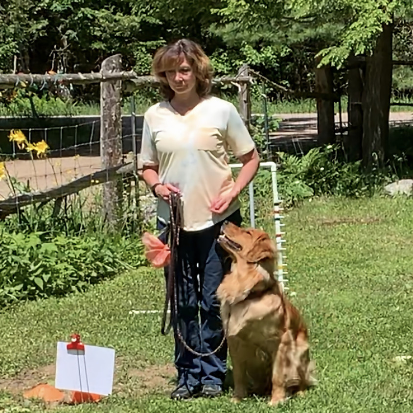 Introduction to  Rally Obedience
