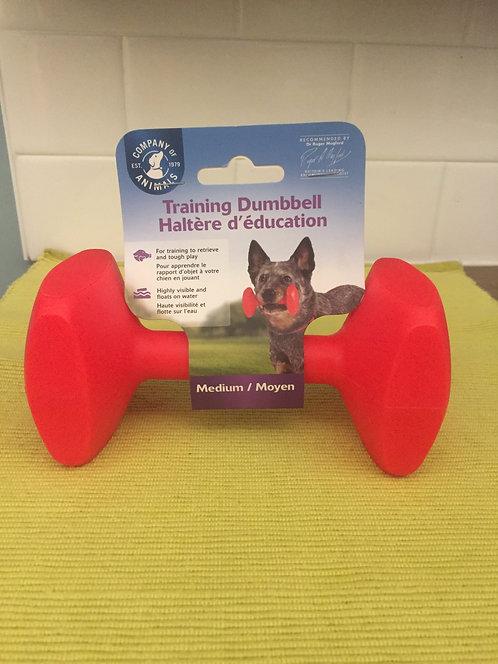 Training Dumbbell - Small