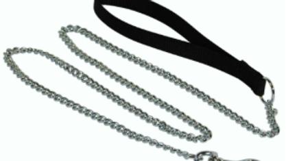 Chain Leash 4'