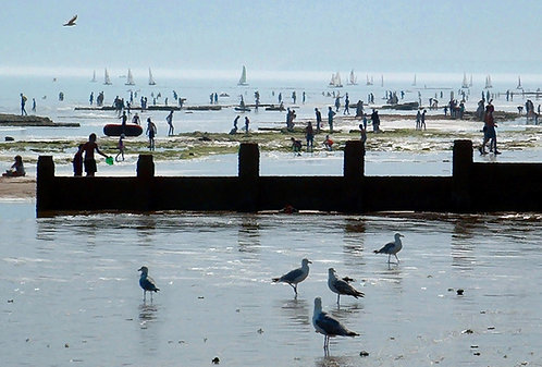 """""""On The Beach """" Photograph Print"""