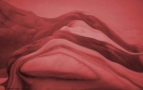 Corpus • Aline Landreau