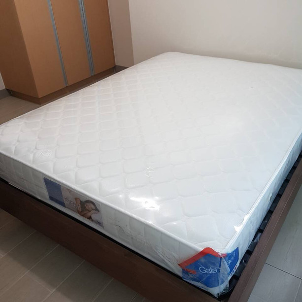 Bed Frame with mattress