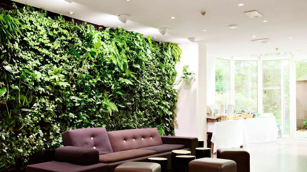 muros-verdes-un-toque-verde-en-cualquier