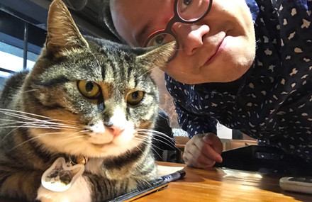 Taipei Cat cafe Apr 2017