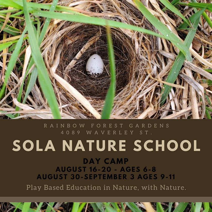 SOLA Day Camp