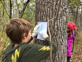 Nature Literacy
